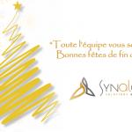 Synalcom vous souhaite de bonnes fêtes de fin d'année 2020 !